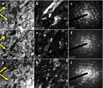 Microstructural Mechanisms during Impact and Evolution of Adiabatic Shear Bands in Steel